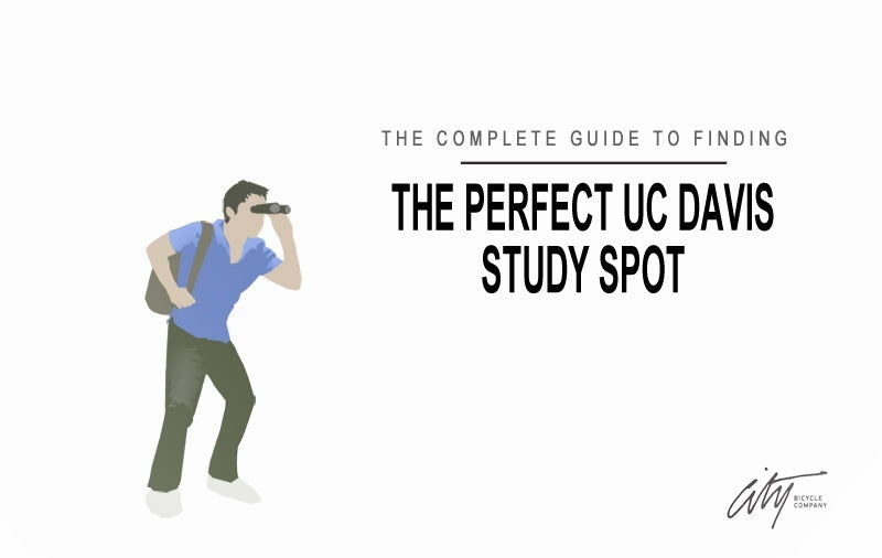 the way of perfection study guide