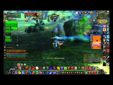 wow human paladin leveling guide