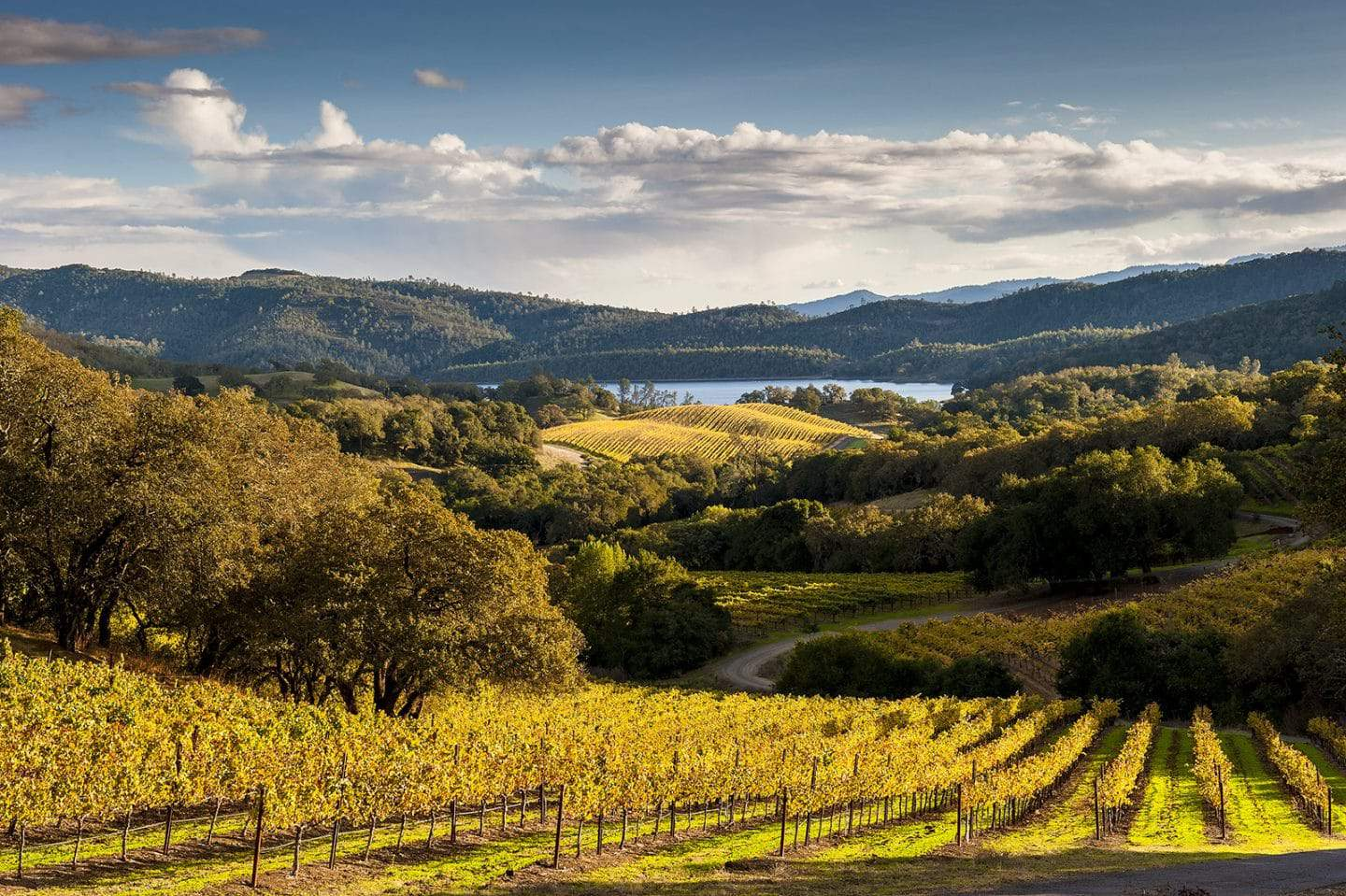 napa valley self guided tour