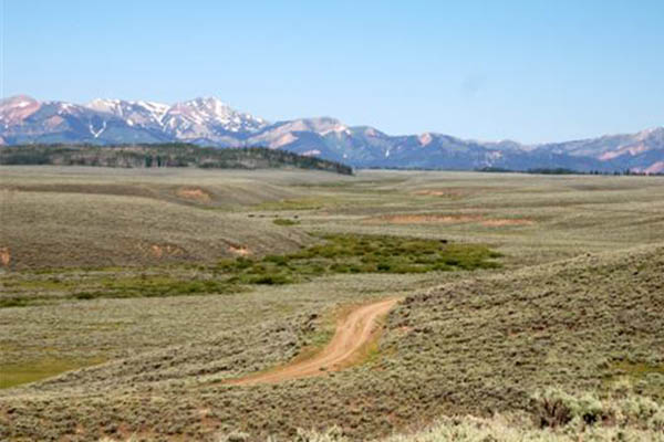 jackson hole fly fishing guides reviews